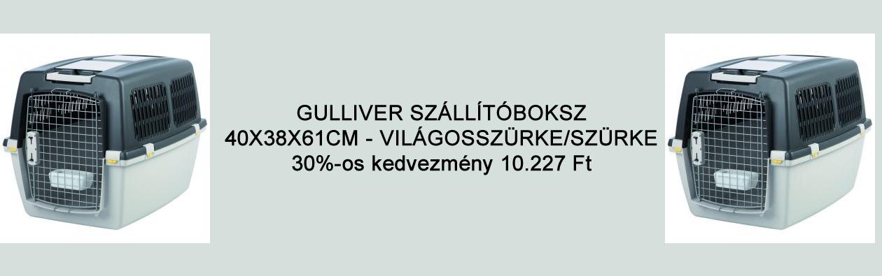 Gulliver box